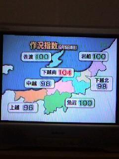 お米の作況指数